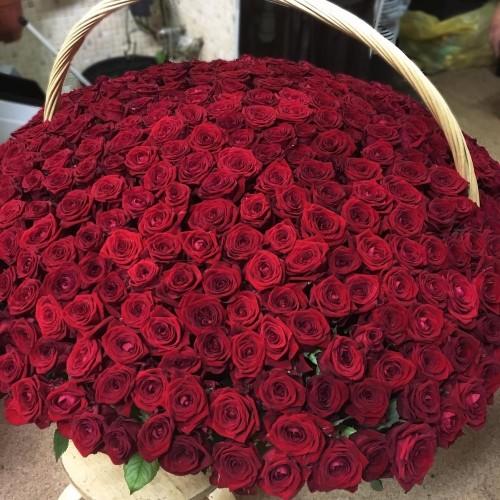 Купить на заказ 1001 роза с доставкой в Ерейментау