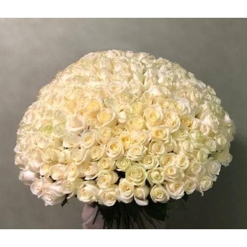 Купить на заказ 201 роза с доставкой в Ерейментау