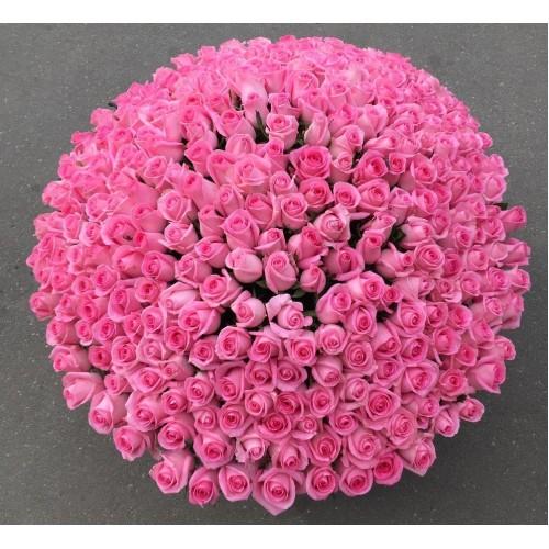 Купить на заказ 501  роза с доставкой в Ерейментау