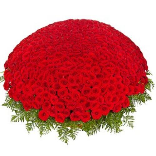 Купить на заказ 301  роза с доставкой в Ерейментау